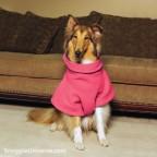 Dog Snuggie® Pink